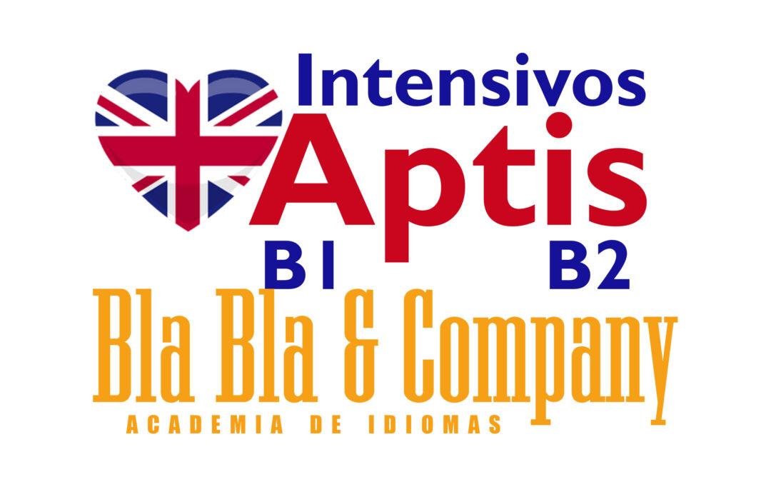 Curso Intensivo Aptis – BlaBlaCompany